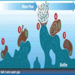 کنترل بایوفیلم به کمک رسوب زدایی آب با امواج رادیویی!